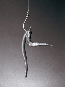 http://www.fotopowers.com/metaphors/images/worm-on-hook.jpg